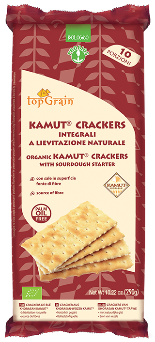 CRACKERS DI KAMUT SALATI IN SUPERFICIE